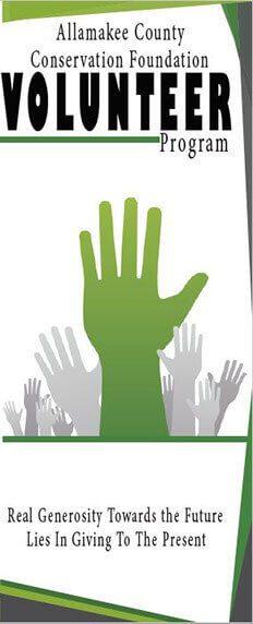 Volunteer Program Flyer